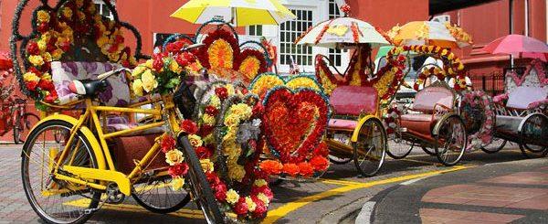 Decorated Pedal Rickshaws